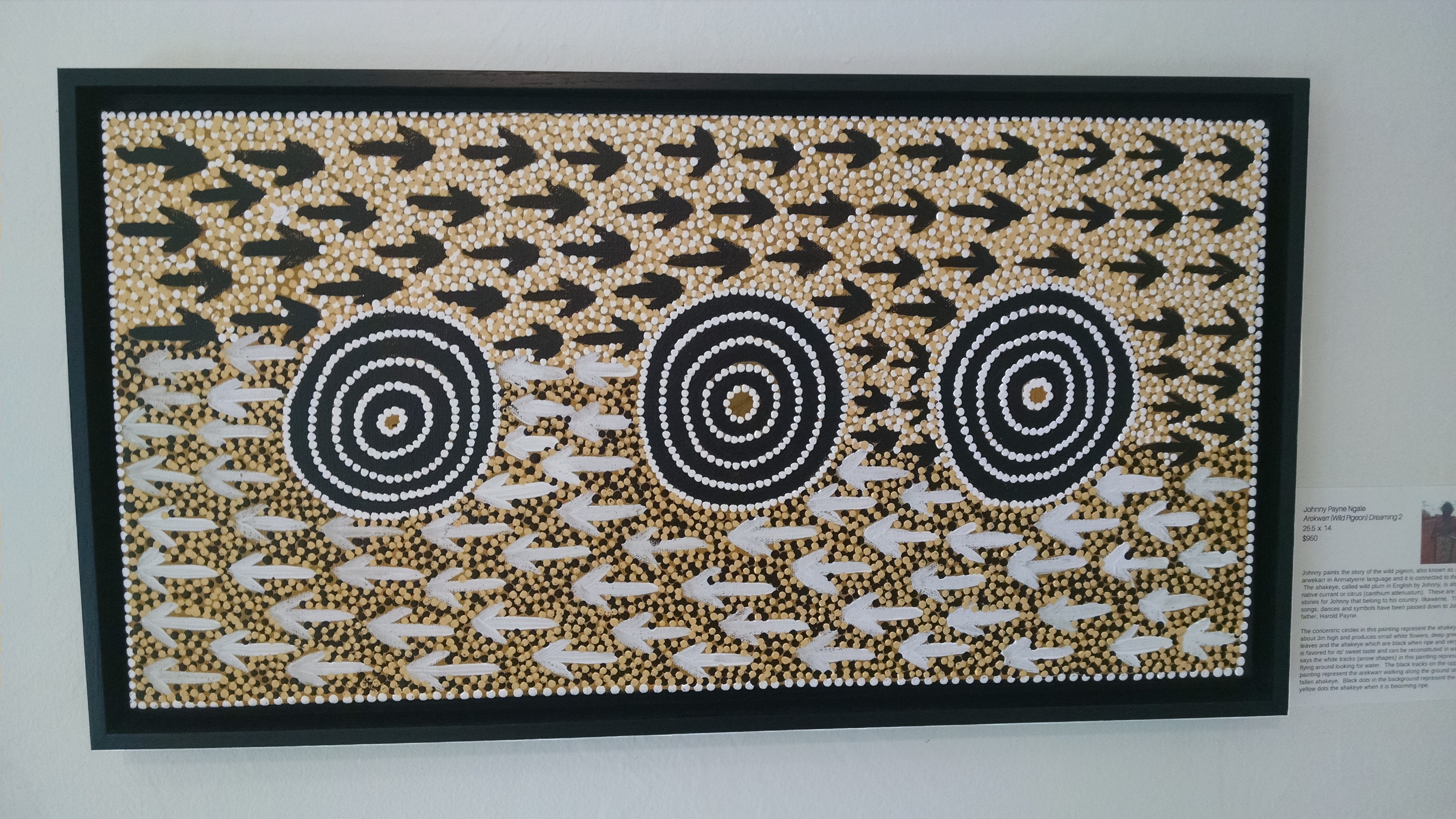 Maori arrows